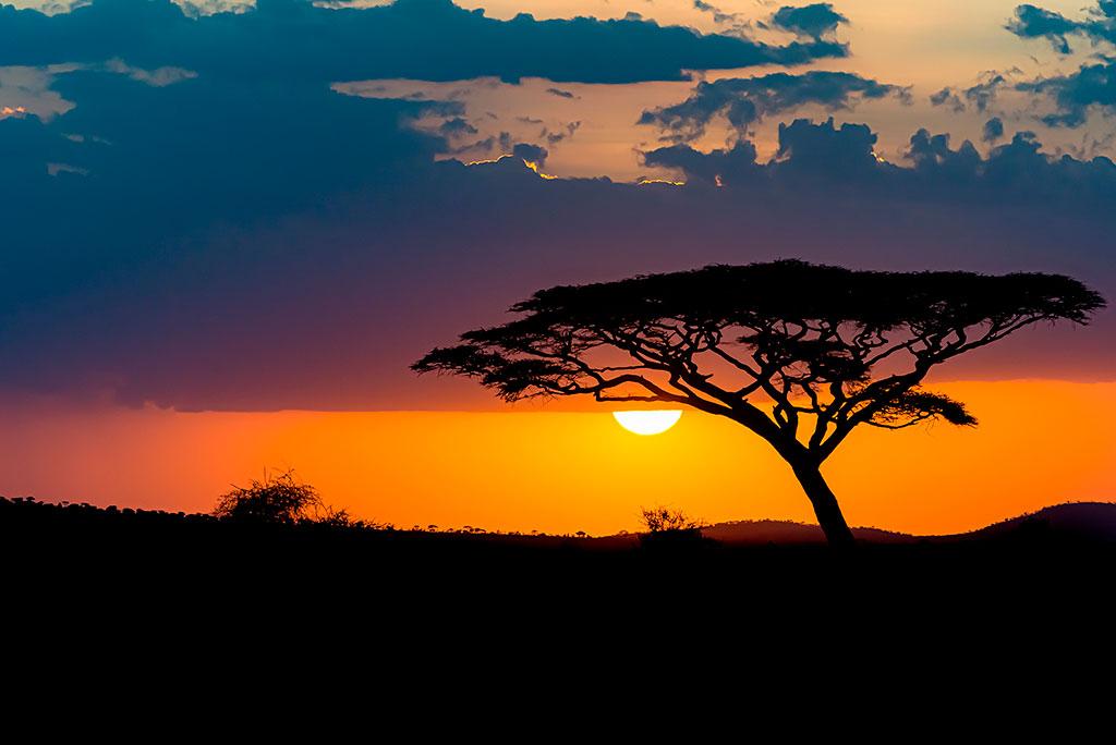 Viaje a Africa con Terminal 9